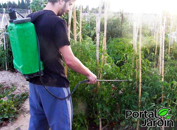 ortiga para nuestro jardín y huerto
