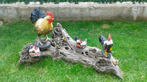 Amigos de Portal Jardín