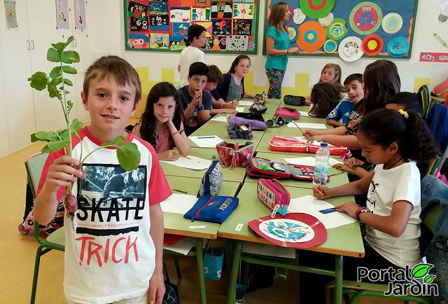 Ecohuerto en el colegio de Villamediana