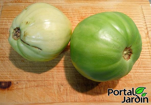 Tomates verdes fritos Portal Jardín