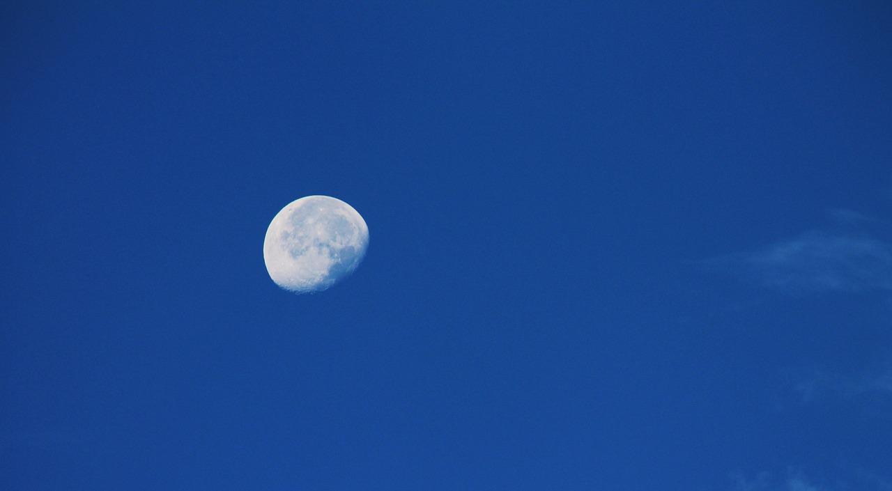 luna Portal Jardín