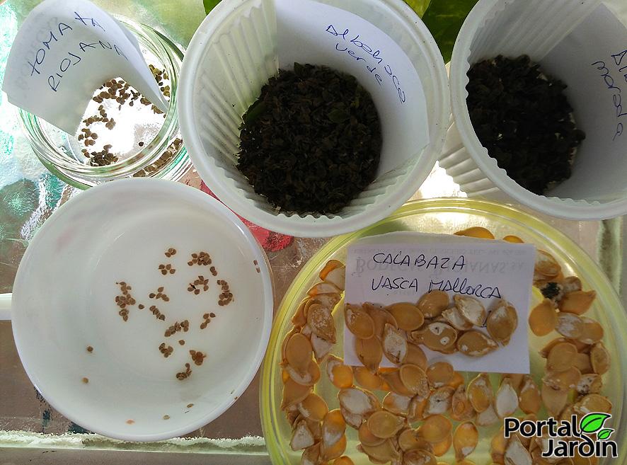 Extracción y guardado de semillas