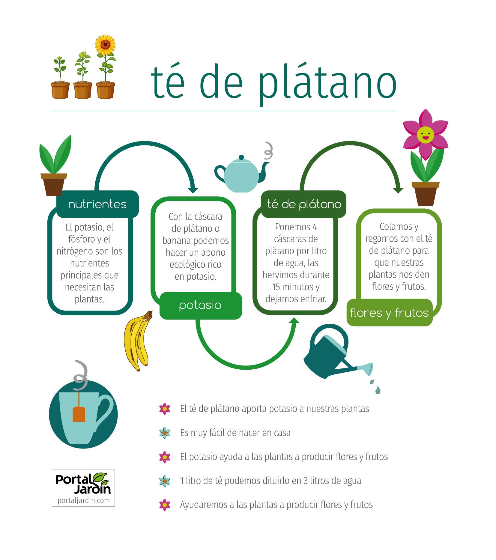 Té de plátano para flores y frutos