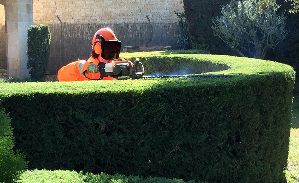 Mantenimiento de jardines Portal Jardin